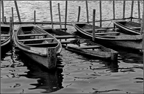 西湖/湖边的小船