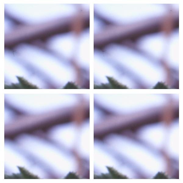 关于Canon 9950F及相关扫描软件的交流 色影