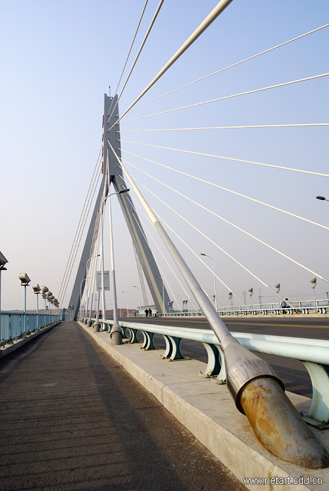 我设计的桥梁(建筑及结构)——燕山大学燕宏桥2