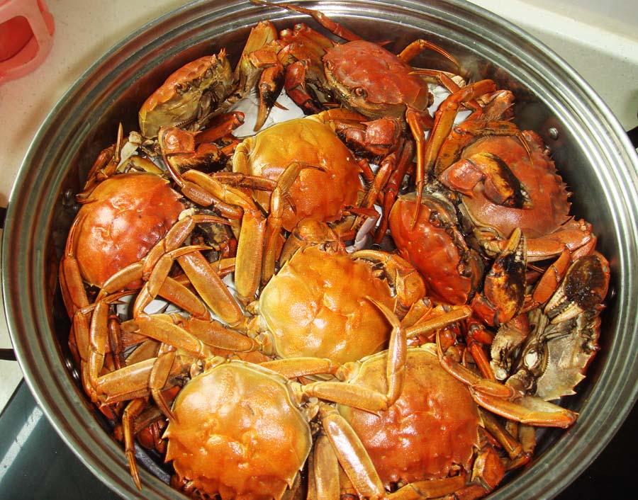 中午创建黄瓜河蟹,晚上忆苦思甜只吃煎蛋做法家庭的榨菜图片