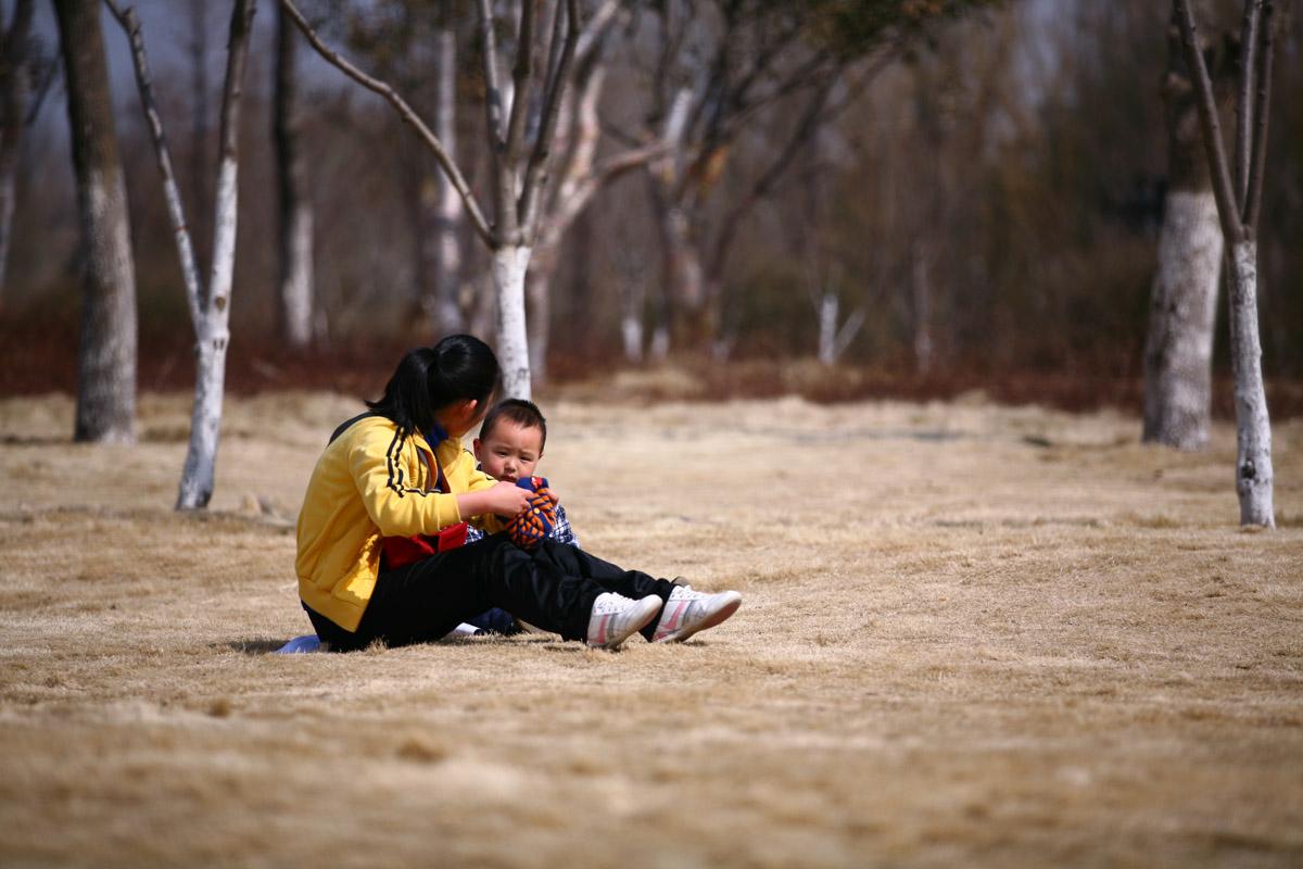 凡女仙葫 冬天的柳叶,我的竹马是男配 冬天的柳叶,糖心蜜意 板栗子,类似妙偶天成的小说