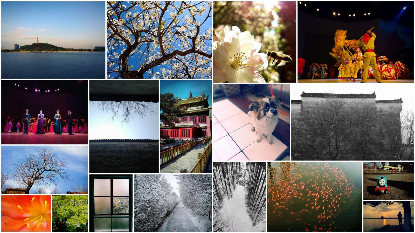 手机影像俱乐部[拼图归档区] - 数码相机图片