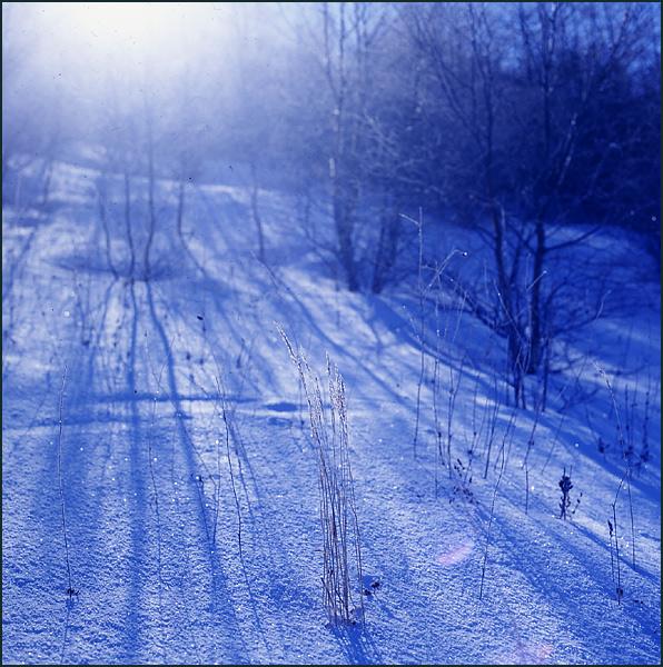 67MM作品:雪原