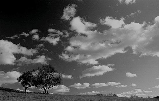 吾常外行作品:故乡的云