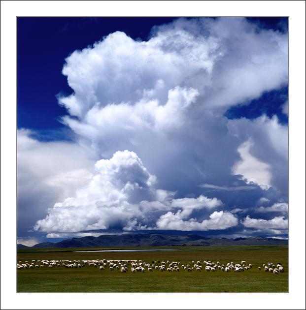 已消毒作品:牧歌绕云