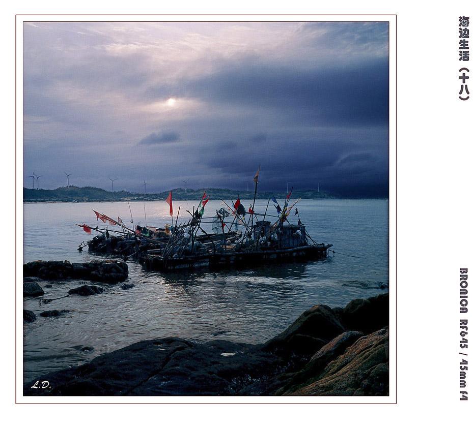 闲云居士作品:海边生活