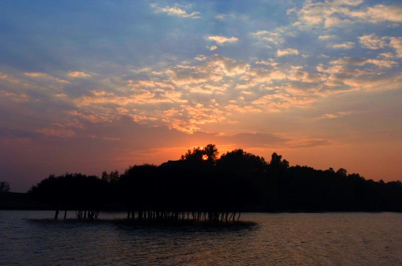 三月百合作品:夕阳-落