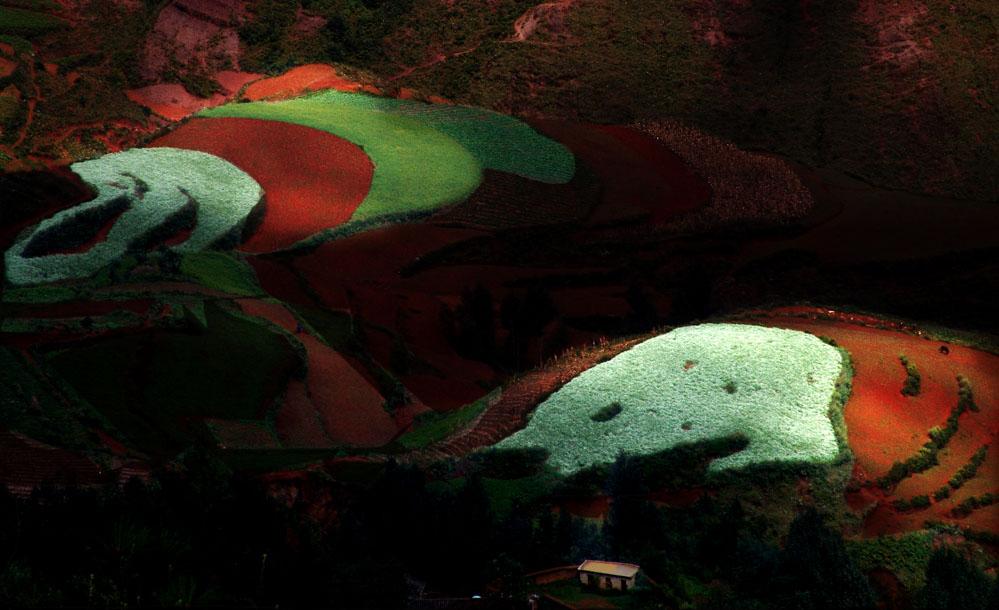 贫下中工作品:色彩斑斓红土地