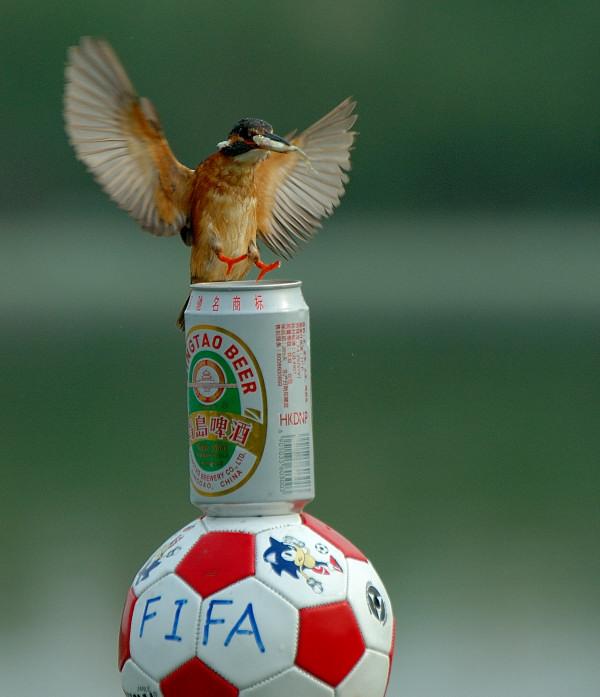 润物无声作品:看世界杯怎能没有青岛啤酒!