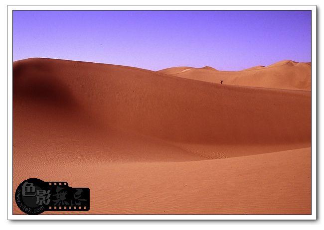流沙作品:沙漠独行