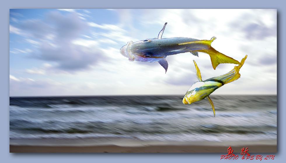 骊歌作品:海阔鱼跃