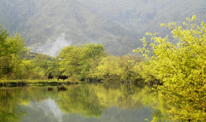 巴布斯卡作品:故乡的小河