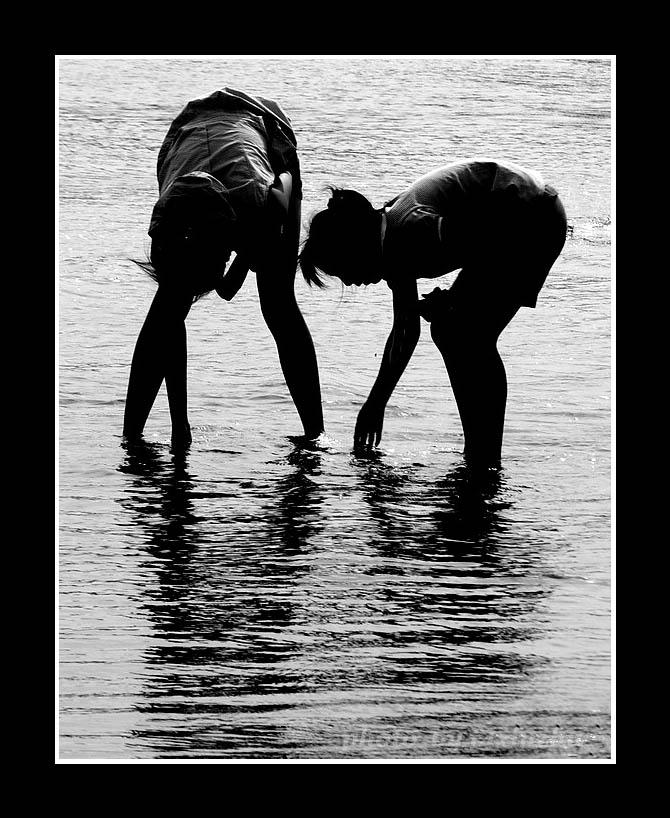 f4xinzhu作品:《海边拾贝》