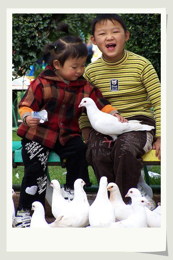a123zj作品:儿童与鸽
