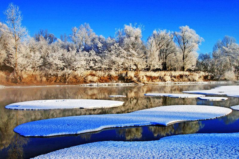tangqingping作品:冬景