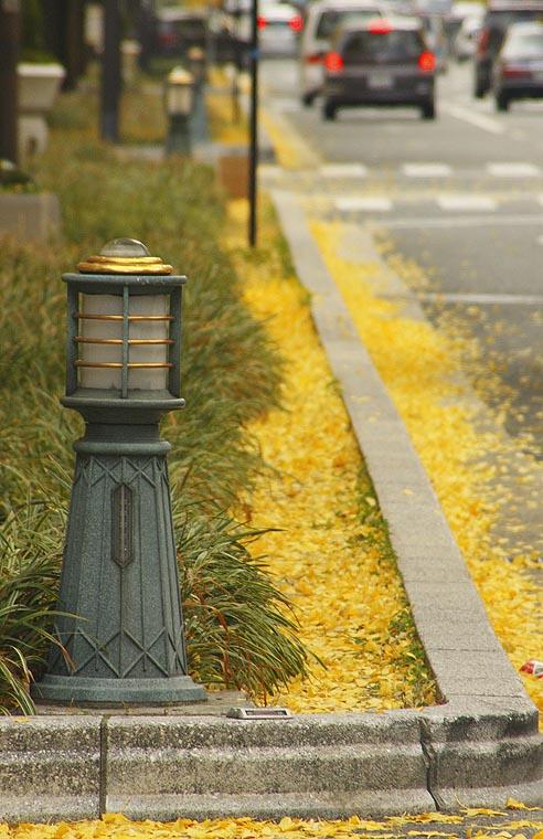 良月朗作品:组图--街道深秋