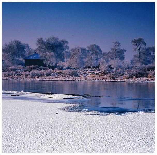 青岛海鸥作品:雾凇岛