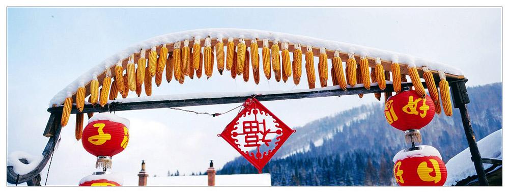 青岛海鸥作品:雪乡