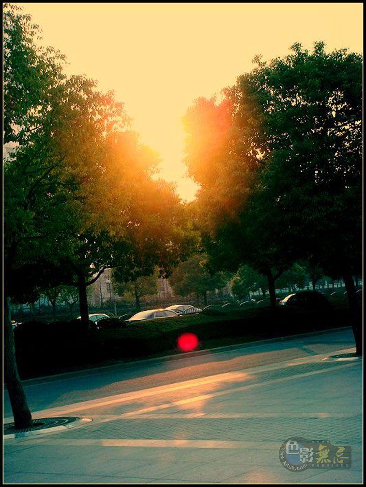美一作品:夕阳