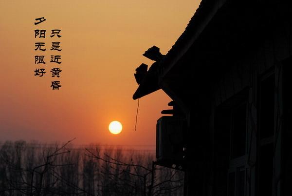 顺文作品:夕阳
