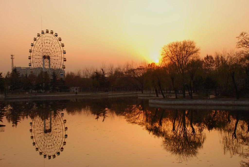 风中的落叶摄影作品 夕阳下的怀旧图片