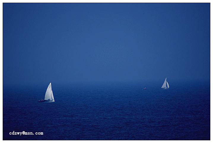 青岛海鸥作品:帆