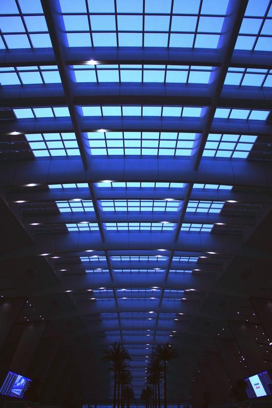 停不下的狗作品:北京南站