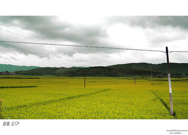 luoren作品:农田