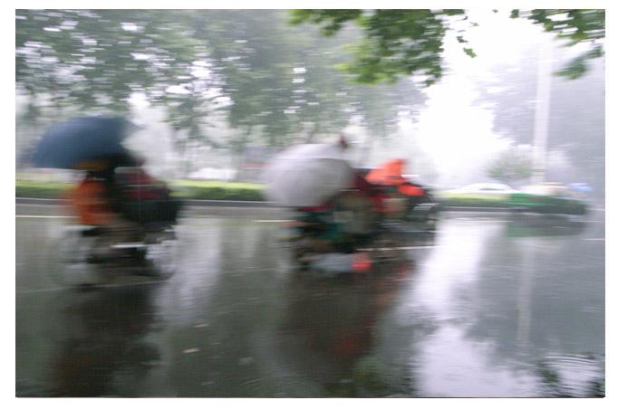 小圆摄影作品 风雨中