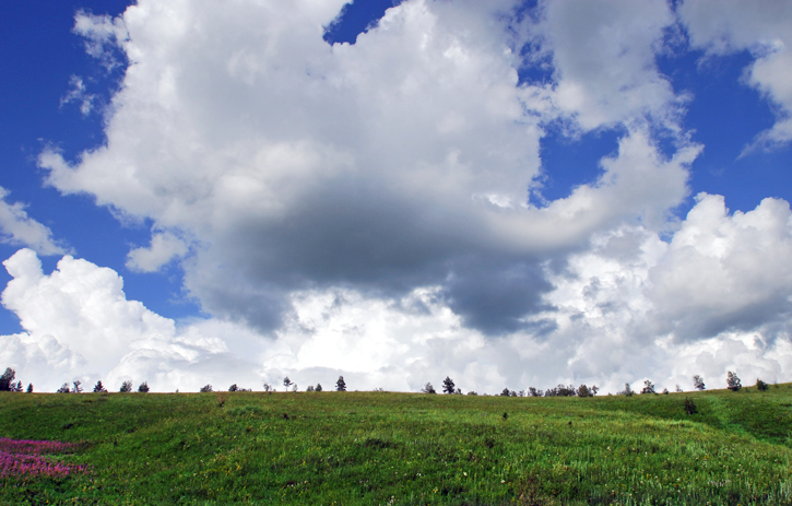 颜明玉作品:云是被,地是床