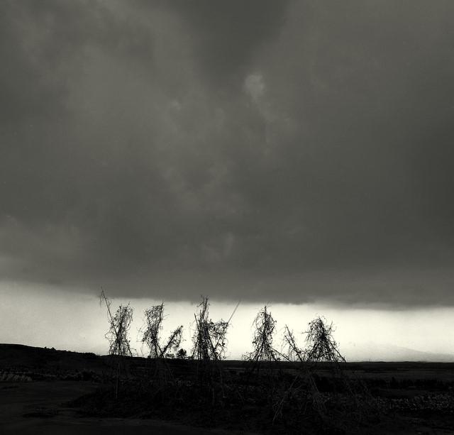 恒父作品:雨之印象