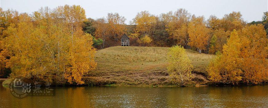 托斯卡那的一棵树作品:金秋坝上-公主湖