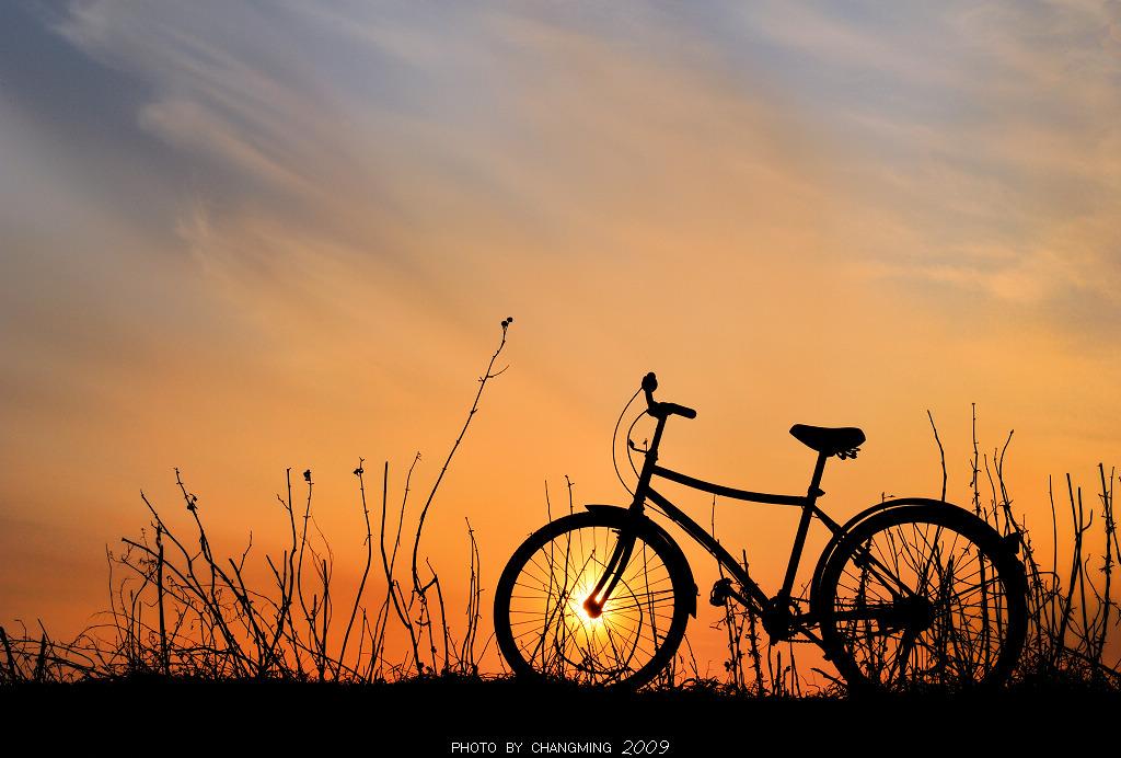 刹车灯作品:夕阳下