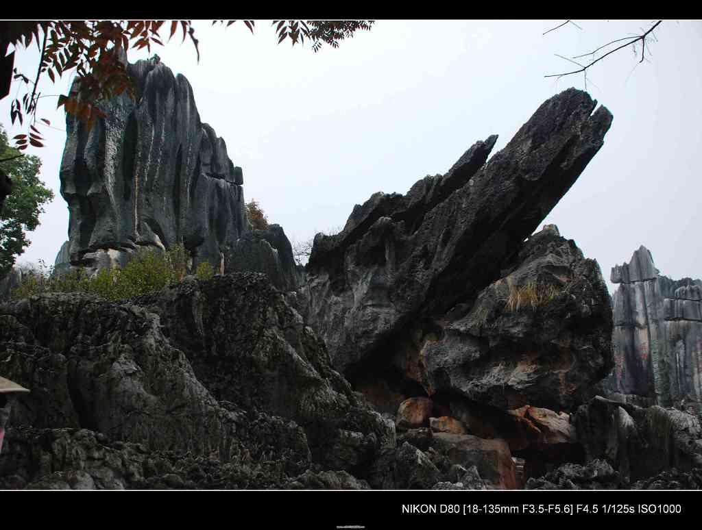 谷香谷色作品:石林--大鹏展翅
