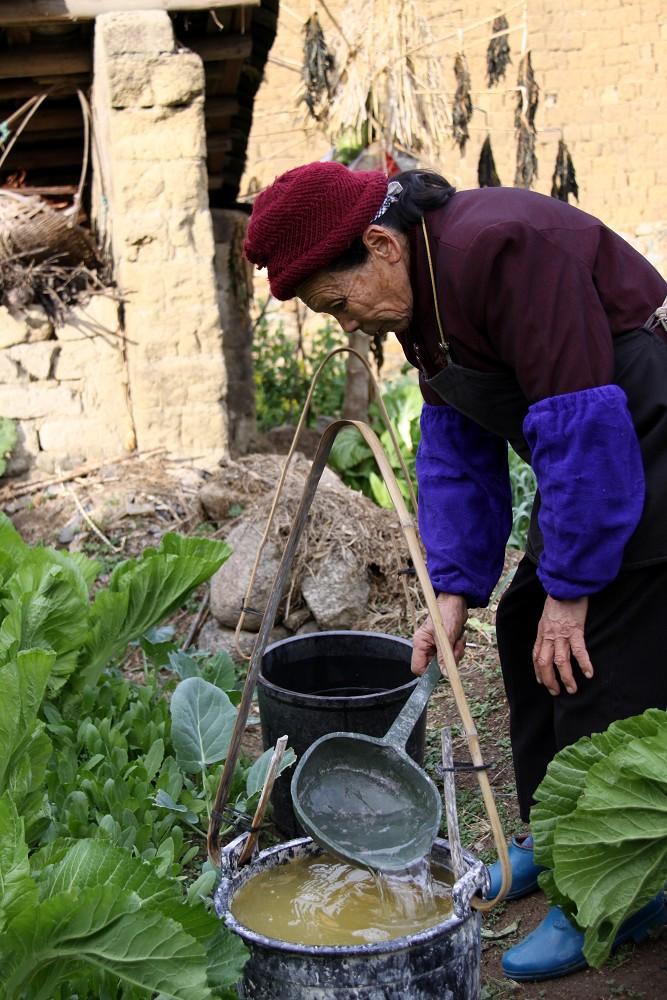 马适作品:菜园里的老妇人