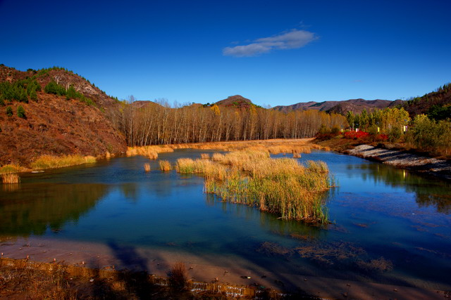 路上,一派秋景装点大地 -古之泉摄影作品 秋染