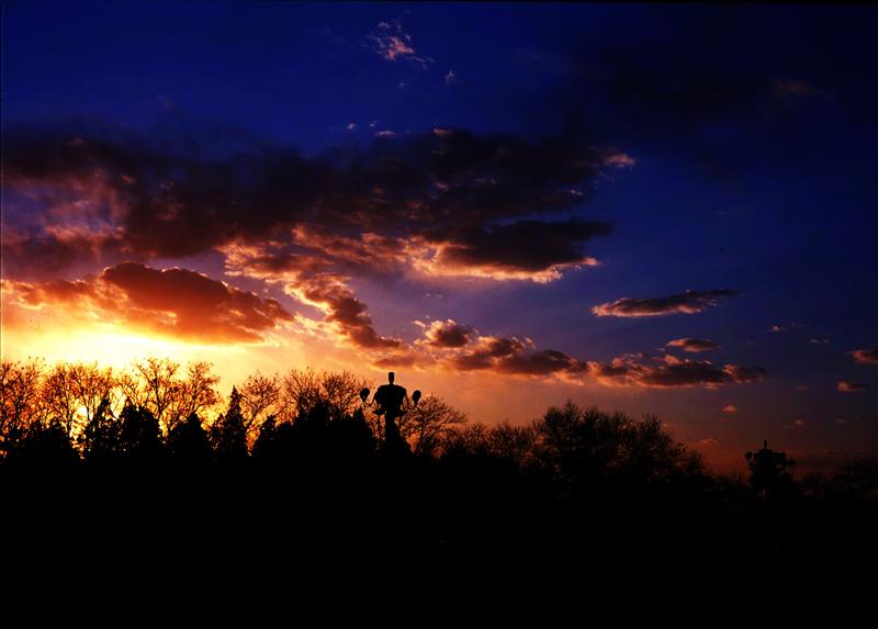 路路路作品:夕阳