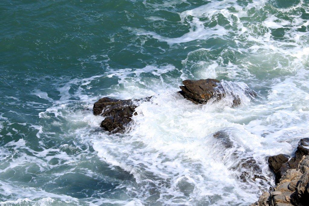 yhp4040588作品:自然风光---海犬
