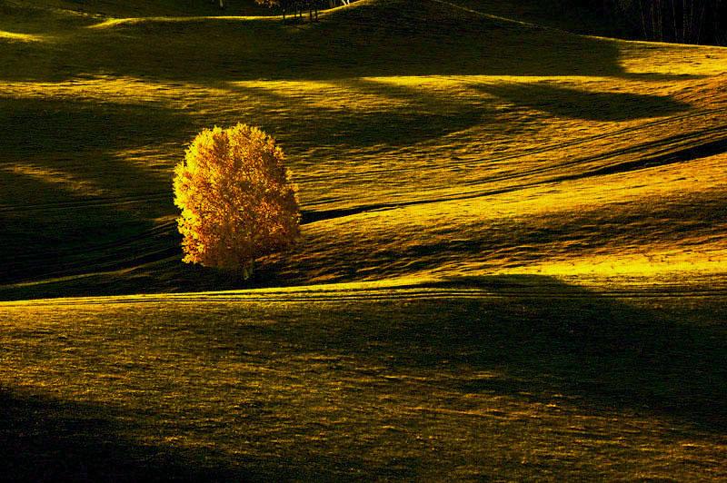 古堤作品:秋色