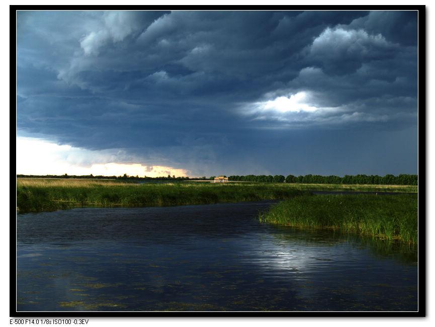 马前草作品:风雨欲来