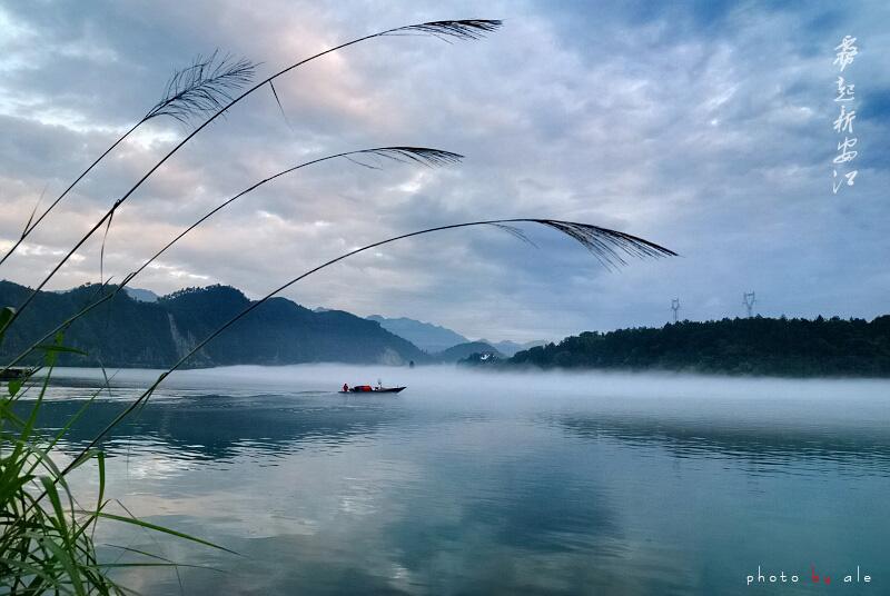 阿乐WX作品:雾起新安江