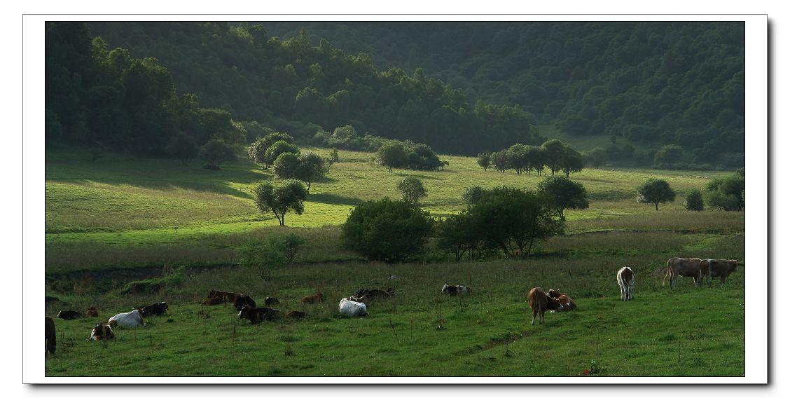 壁炉谷人口-同谷人摄影作品 关山牧场