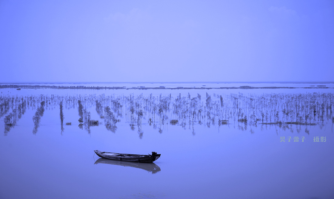 昊子蕾子作品:静谧的鄱阳湖