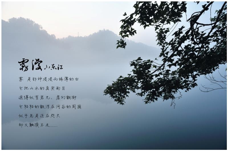 丹青刘作品:明信片