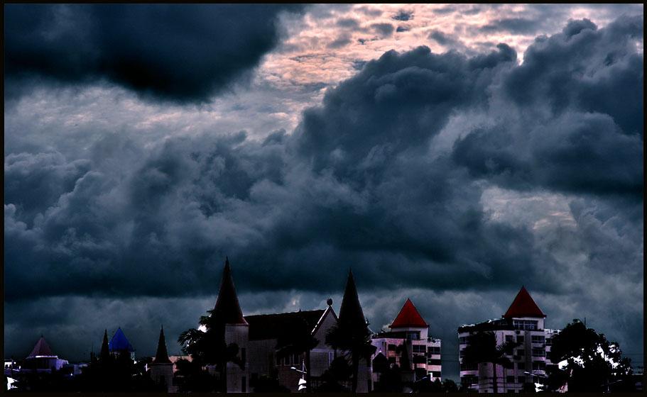奔马摄影作品 阳光总在风雨后