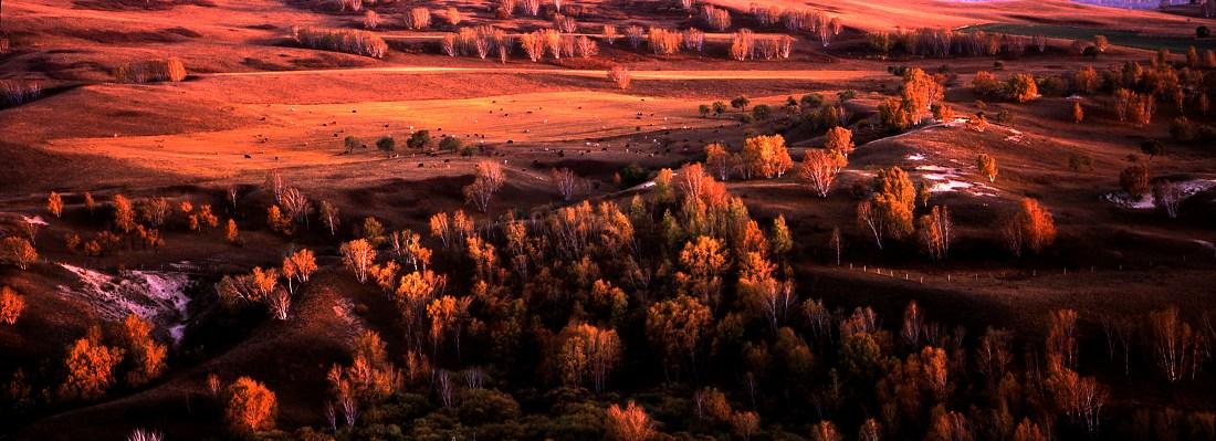 花果山作品:秋色正浓