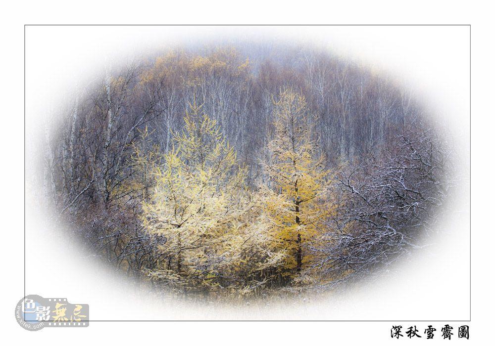 云中龙舞作品:深秋雪霁