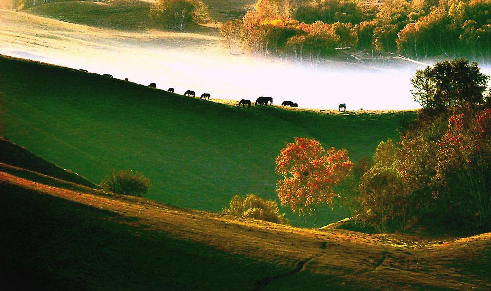 古堤作品:秋之歌