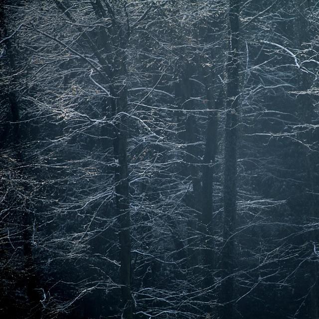 恒父作品:雪融