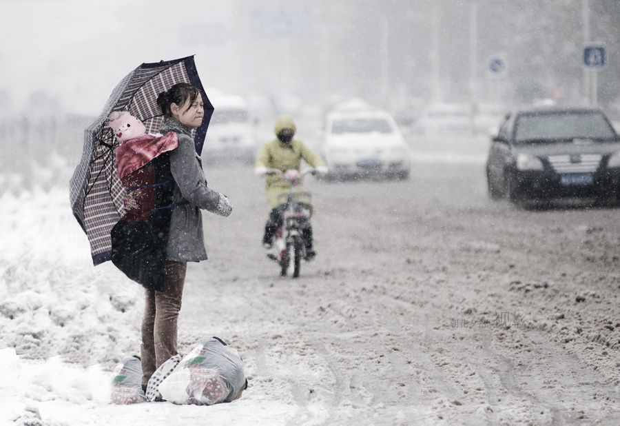 朝花夕拾的视界作品:风雪无阻回家路